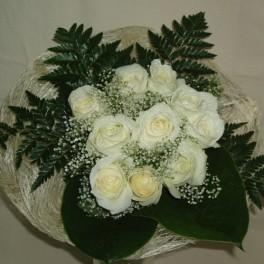 Rosas 'White Snow'