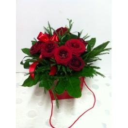 Rosas 'Romance'